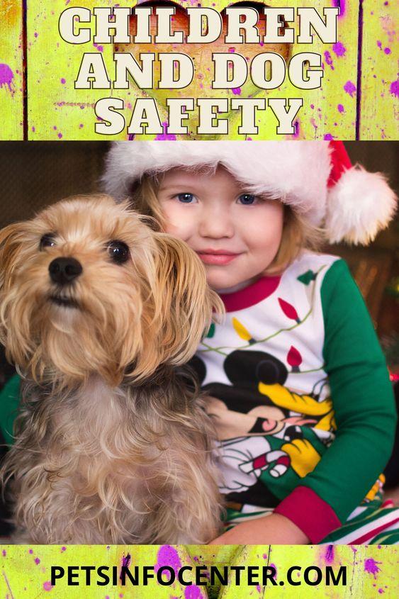 Children and Dog Safety